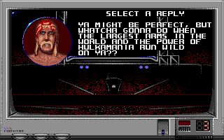 209021-wwf-wrestlemania-dos-screenshot-it-s-kind-of-like-combat-in